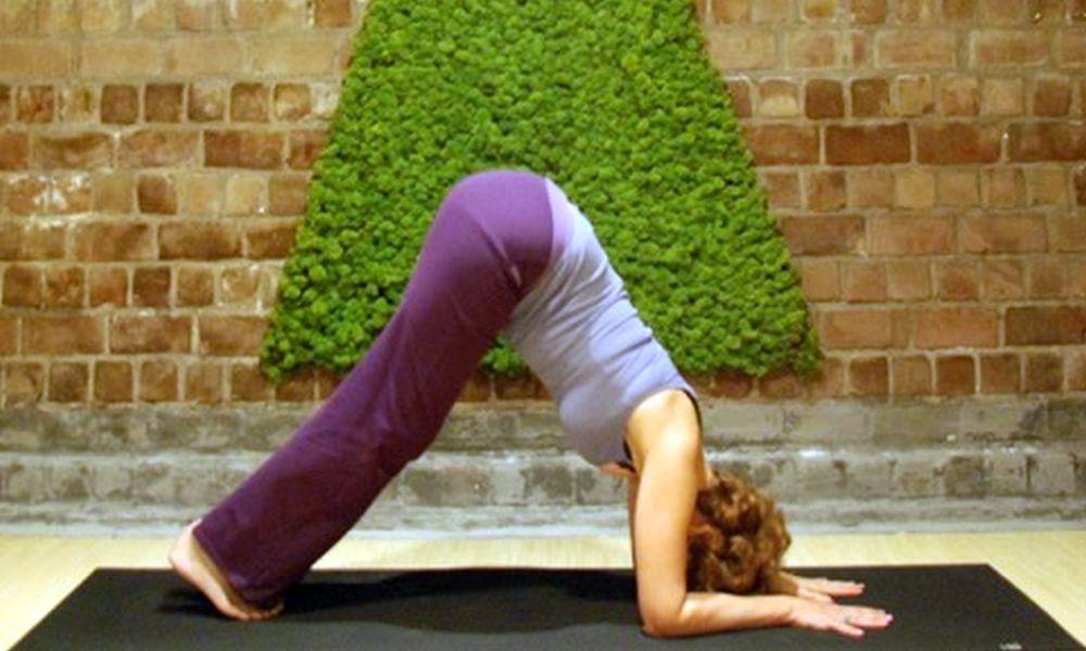 Dynamische hatha yoga